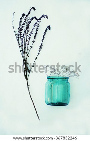 Beautiful purple flowers. Still Life . Bouquet of wild flowers in a glass vase. Nice flowers in the bottles. Table decorated with the flowers. Bouquet of flowers autumn in a vase.   - stock photo