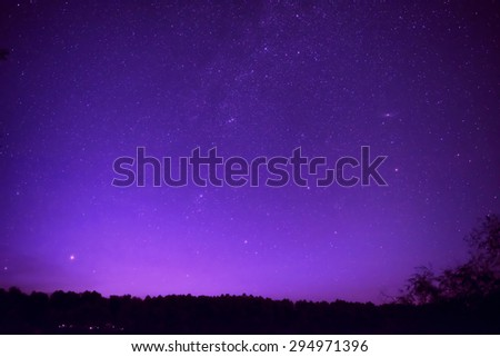 Beautiful purple night sky with many stars above the forest. Milkyway space background - stock photo