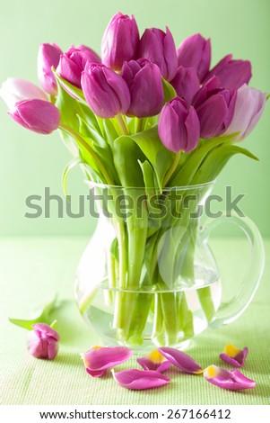 beautiful purple tulip flowers bouquet in vase - stock photo