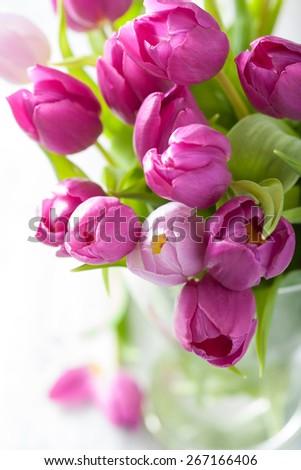 beautiful purple tulip flowers in vase  - stock photo