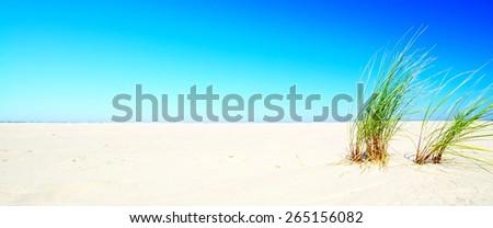 Beautiful quiet beach on the Baltic Sea. - stock photo
