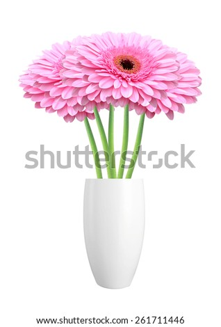 Beautiful red gerbera flowers in vase isolated on white background - stock photo