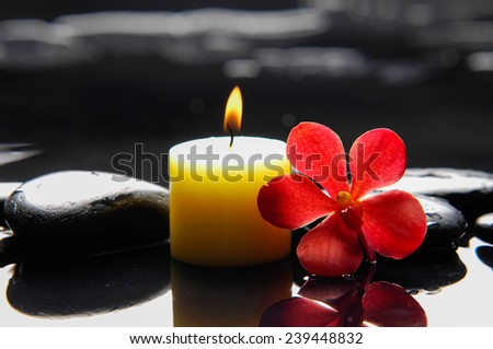Beautiful red orchid with candle and therapy stones  - stock photo