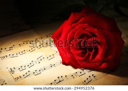 Beautiful red rose on music sheets, closeup - stock photo