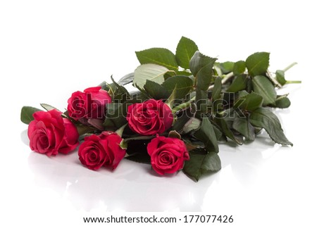 Beautiful red roses isolated on white - stock photo