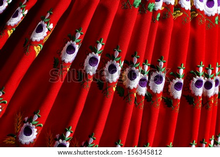 beautiful red skirt to the traditional costume with embroidered flowers