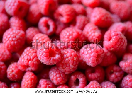 Beautiful Red Summer Background of Ripe Juicy Raspberries - stock photo