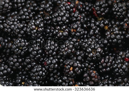 Beautiful ripe blackberry background, close up
