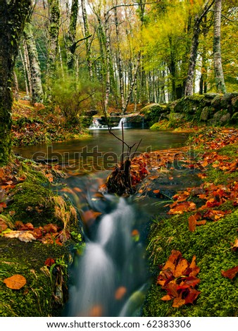 Beautiful river flowing by the forest during the Autumn season - stock photo