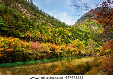 Beautiful river with crystal clear water among fall woods, Jiuzhaigou nature reserve (Jiuzhai Valley National Park), Sichuan province, China. Colorful trees reflected in water. Autumn forest landscape - stock photo