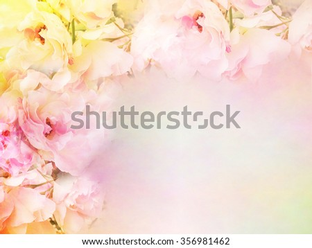 beautiful rose flowers border vintage color filters, roses flower background for valentine, wedding card - stock photo