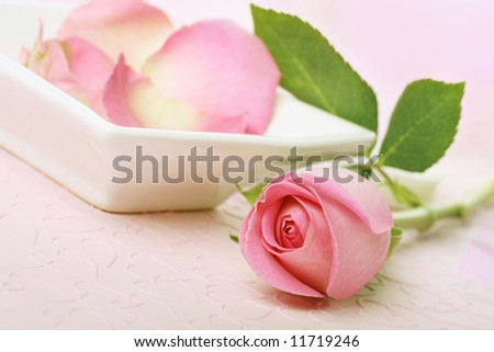 beautiful rose with scented rose petal water in a bowl.