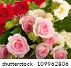 Beautiful roses in retro style, flower, floral background - stock photo