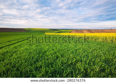 Beautiful rural landscape - stock photo