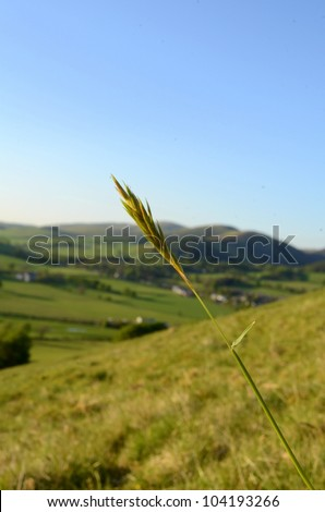 Beautiful Rural Landscape Of The Scottish Borders In The Evening Light - stock photo