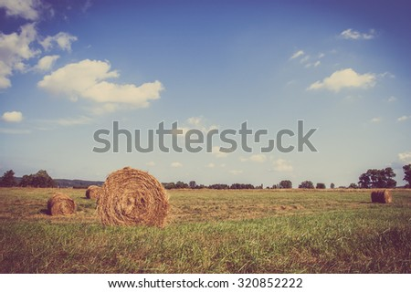 Beautiful rural landscape showing hay bales on meadow in summer at harvest. Farmland and agriculture in Poland, vintage photo. - stock photo
