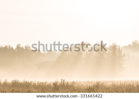 Beautiful rural meadows and forrest in a foggy morning - stock photo