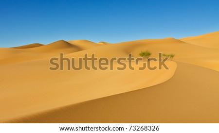 Beautiful Sand Dune in the Awbari Sand Sea, Sahara Desert, Libya - stock photo