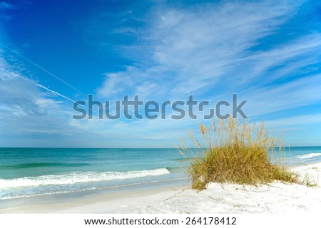 Beautiful Sand Dunes and Sea Oats on the Coastline of Anna Maria Island, Florida - stock photo
