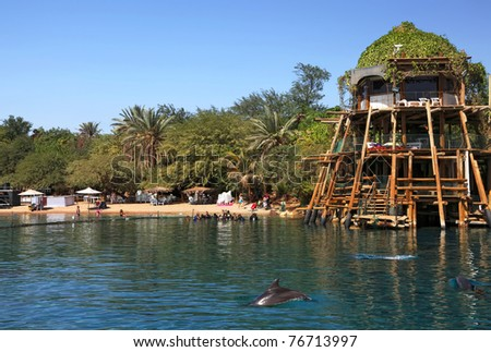 Beautiful sandy beach of Red sea from a bungalow, trees and dolphins (Eilat. Israel) - stock photo