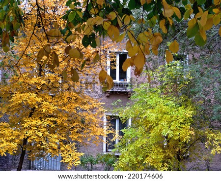 Beautiful scenery, TOWN HOUSE, FALL, WINDOWS, emerges through the multi-colored leaves on the trees