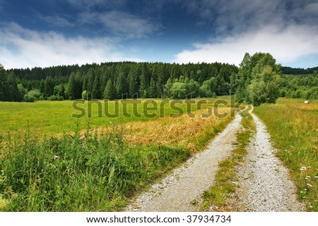 beautiful scenery with green field and
