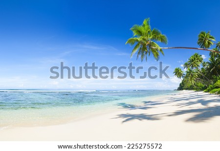 Beautiful scenic beach. - stock photo