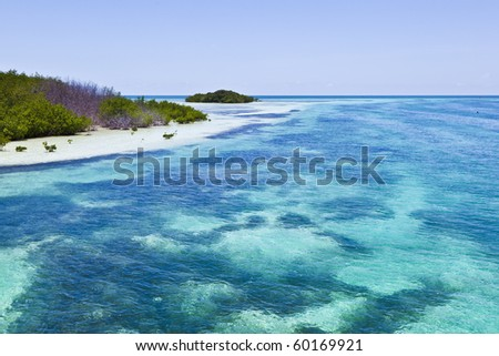beautiful scenic beaches and clear water in the Keys with palms and mangroves - stock photo