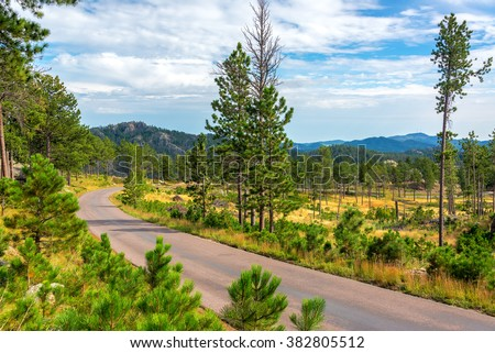 Beautiful scenic road passing through Custer State Park - stock photo