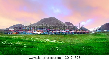 Beautiful scenic view of Longyearbyen with green field and arctic flowers against the background of dramatic cloudy sky, grey mountain range and colorful houses, Norway, Spitsbergen (Svalbard island) - stock photo