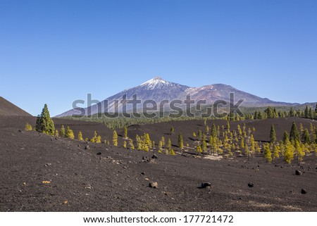Beautiful scenic view of mount Teide national park in Tenerife, Canary Island