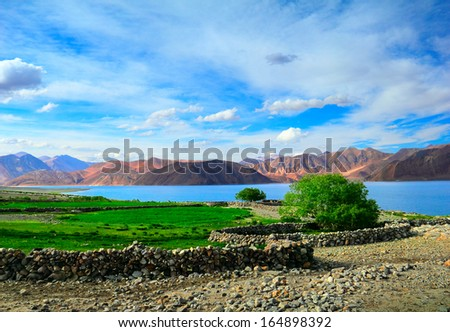 Beautiful scenic view of Pangong lake with green field, bush and stone wall against the background of distant colorful mountain range and blue sky, Ladakh, Himalaya, Jammu & Kashmir, Northern India  - stock photo