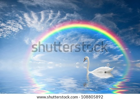 Beautiful seascape with rainbow reflection in water and a floating swan - stock photo