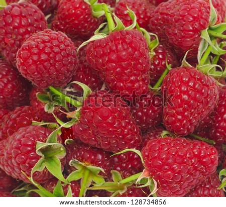 Beautiful selection of freshly picked red ripe raspberries with green leafs - stock photo