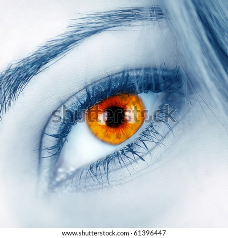 Beautiful shape of female eye close-up - stock photo