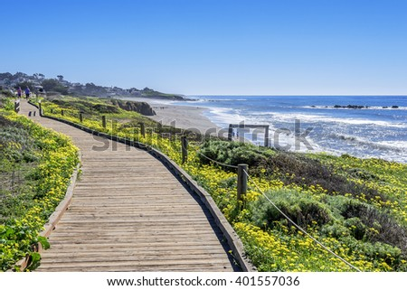 Beautiful shimmering blue sea & white water waves crashing on Moonstone Beach, while people are enjoying a walk / stroll on the boardwalk / beach & beautiful yellow flowers abound, near Cambria, CA - stock photo