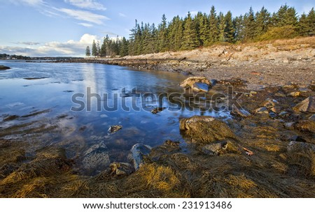 Beautiful shoreline in the New England state of Maine, USA - stock photo