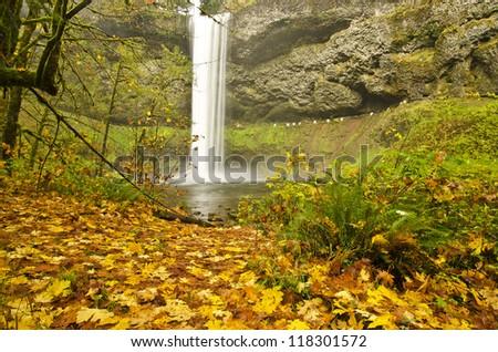 Beautiful Silver Falls in Fall Color at Silver Falls Sate Park - stock photo