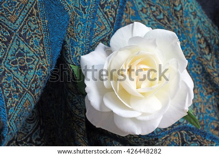 Beautiful single white rose on the dark blue ornamental textile background with copy space, place for text, close up, fresh flowers, empty greetings card, top view, flat lay - stock photo