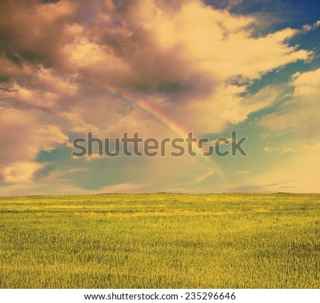 beautiful sky with rainbow and summer fields, retro film filtered, instagram style  - stock photo
