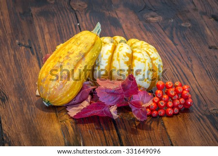 Beautiful small pumpkins displayed on a rustic wooden table - stock photo