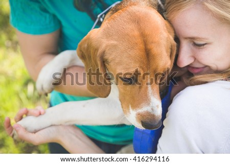 Beautiful smiling woman playing with her dog. Woman and man with their nice dog in the park. summer walk with a dog. Beagle breed dog. - stock photo