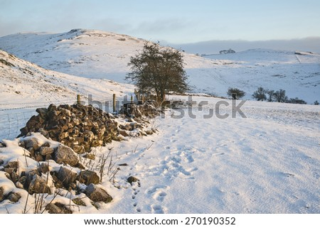 Beautiful snow covered sunrise Winter countryside landscape - stock photo