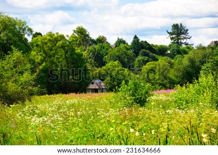 Beautiful solar landscape with herb and flowers on meadow and sunny sky. House in a clearing in the distance. - stock photo