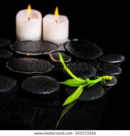 beautiful spa background of green branch bamboo and candles on zen basalt stones with dew in reflection water, closeup - stock photo
