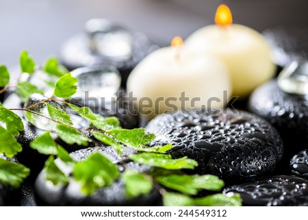 beautiful spa background of green twig fern, ice and candles on zen basalt stones with dew - stock photo