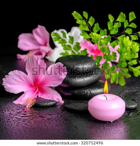 beautiful spa concept of pink hibiscus flowers, fern branch, candle and zen basalt stones with drops, closeup - stock photo