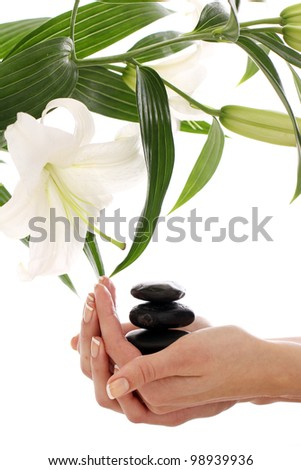 Beautiful spa hands over white background - stock photo