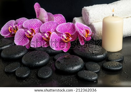 Beautiful spa still life of blooming twig of stripped violet orchid (phalaenopsis ) on zen stones with drops and stacked of towel and candle, closeup - stock photo