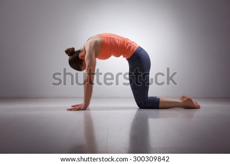 Beautiful sporty fit yogini woman practices yoga asana marjariasana - cat pose gentle warm up for spine (also called cat-cow pose) in studio - stock photo